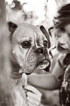 Beautiful senior boxer...  Yes, sweetheart, I'm here for you for as long as we can be together. I'll love and care for you until the end. You NEVER need to worry about that.