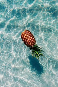 @TheReaRho ♡ pick up the pineapple