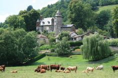 Château d'Oyez, Auvergne, France