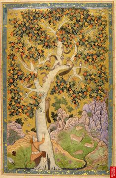 Mughal manuscript attributed to Abu'l Hasan, 1605-08. In the center a very large tree with mult-colored leaves filling most of the page. Squirrels scamper on the branches as a man attempts to get a foothold.