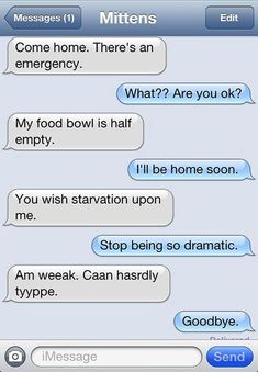 Funny pictures about 15 Text Messages A Cat Would Send If Cats Could Actually Text. Oh, and cool pics about 15 Text Messages A Cat Would Send If Cats Could Actually Text. Also, 15 Text Messages A Cat Would Send If Cats Could Actually Text photos. Send Text Message, Funny Text Messages, Dog Texts, Funny Texts, 9gag Funny, Text From Mittens, Cat Text, Funny Animal Quotes, Hilarious Animals