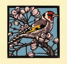 Goldfinch, Jill Kerr