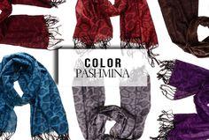 Color pashmina #sjaals http://www.auko.nl/subcategorie/12351/nieuw/