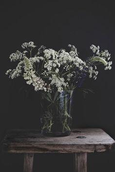 ... Anna Kvarnström photography ♥ ...