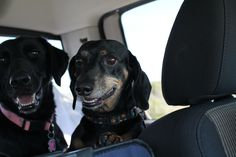 That moment when they realize we are on Ocracoke.  Jennifer O'Neal