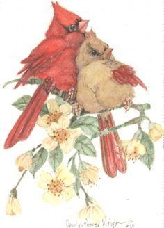 just a couple of love birds. Bird Illustration, Illustrations, Bird Drawings, Cute Drawings, Images Vintage, Kinds Of Birds, Bird Pictures, Cute Birds, Watercolor Bird