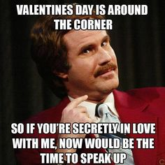 20 Funny Valentine's Day Memes For Singles - Funny Ron Burgundy, Valentine's Day Quotes, Funny Quotes, Funny Memes, Funny Videos, Funniest Memes, Humor Videos, Fact Quotes, Sarcastic Quotes