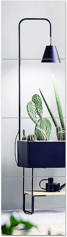 Amazon.com: Fivtyily Full Length Mirror Tiles,12 Inch x 4 Pieces Frameless Wall Mirror Stickers Self Adhesive Make UP Mirror for Wall Decor Living Room Vanity Bedroom (12inch): Home & Kitchen Gym Mirrors, Mirror Tiles, Living Room Vanity, Living Room Decor, Wall Mounted Mirror, Wall Mirror, Mirror Stickers, Home Kitchens, Adhesive
