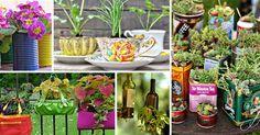 Já imaginou ter um jardim dentro da sua casa? Usando a criatividade isso é possível, veja aqui 10 ideias encantadoras de jardins internos.