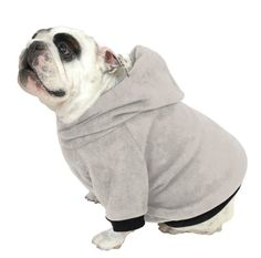 Plus Size Pups English Bulldog Dog Sweatshirt Beefy Heather Grey ** Read more reviews of the product by visiting the link on the image. (This is an affiliate link) #dogapparel