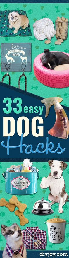 DIY Dog Hacks - Training Tips, Ideas for Dog Beds and Toys, Homemade Remedies for Fleas and Scratching - Do It Yourself Dog Treat Recips, Food and Gear for Your Pet http://diyjoy.com/diy-dog-hacks