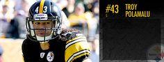 Pittsburgh Steelers: Troy Polamalu