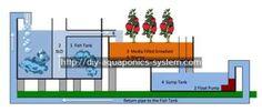 aquaponics system - basic hydroponic setup.how to make aquaponics 2920967636