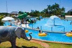 Tobogã infantil em forma de Rã Gigante, a Cascata Gelada e os Golfinhos Azuis fazem a diversão no Acquamania em Foz do Iguaçu.