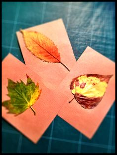 Luxo autumn invitations.