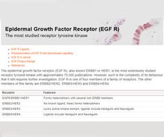 The epidermal growth factor receptor (EGF R), also known or is the most extensively studied receptor tyrosine kinase with approximately publications. However, such is the complexity of its behavior that it still requires further investigation. Factors, Behavior, Behance