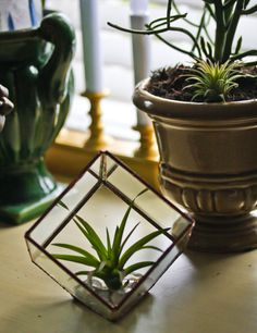 Rustic Stained Glass Crystal Garden / Terrarium / Display Case - Cube
