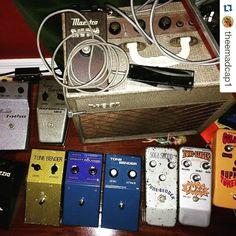 Repost @theemadcap1:  Fuzz pedal auditions.  #fuzzpedals #vintage #1961 #vox #ac2 #tonebender #1966 #MKI #Solasound #MKIV #marshall #supafuzz  #elka #dizzytone #maestro #fz1 #1962 #fuzztone #DAM #differentialaudiomanifestationz #colorsound #supatonebender #WEM #ProjectV #distortionbooster #fuzz #decadeoffuzz