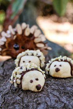These baby hedgehog cookies are almost too cute to eat. However, they're made from a yummy shortbread recipe, so they're too tasty not to! My Recipes, Cookie Recipes, Dessert Recipes, Cute Cookies, Yummy Cookies, Shortbread Cookies, Hedgehog Cookies, Salad Cake, Cooking Cookies