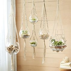 5 Hand Braided Macramé Plant Hangers Variety of 5 Hand Braided Macramé Plant Hangers/ Terrariums Includes Cotton Rope and Glass Bowl - Cotton/Glass. Pictured left to right: Large, Small, Double, Mediu