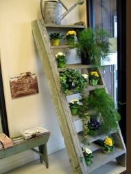 Upcycled garden beds