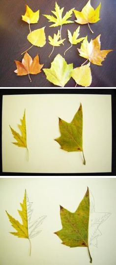 Art lessons for kids. Learn to draw - HALF a LEAF