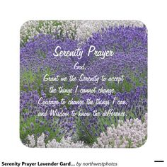 Serenity Prayer Lavender Garden Photo Coaster Set