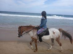 White Pearl Resort, Ponta Mamoli, Moçambique | Viaje Comigo - Part 2 Horses, Animals, Traveling, Animales, Animaux, Animal, Animais, Horse