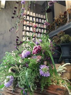 Catherine muller flower school Flower Farm, Fresh Flowers, Her Hair, Floral Arrangements, Floral Design, French, Space, School, Green