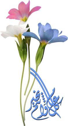 """DesertRose,;,❤ لن ينسى الله خيراً قدمته،  ولاهماً فرّجته ولا عيناً كادت  أن تبكي فأسعدتها! عش حياتك على مبدأ  """"كـن مُحسناً حتى وإن لم تلقى إحساناً، ليس لأجلهم بل لأن الله يحب المحسنين"""" سهل الله لكم الخير والفلاح ورزقكم غاية السعادة والإنشراح.. وغفر الله لكم ولوالديكم وأدخلكم جنات النعيم ,;,"""