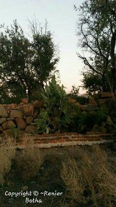 Landscape ..... captured by Renier Botha..... on farm outside Koppies