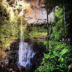 Purlingbrook Falls, Gold Coast #Australia