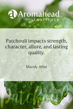 Today I am reflecting on the qualities of Patchouli. love Andrea!
