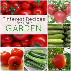 The Pin Junkie: Summer Garden Recipes