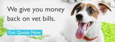 We Give you Money Back on Vet Bills #PetInsurance