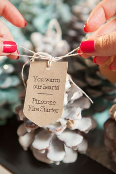 DIY - How to make Pinecone Fire Starter favors for your winter wedding!