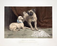 Othello and Desdemona  | From a unique collection of animal prints at https://www.1stdibs.com/art/prints-works-on-paper/animal-prints-works-on-paper/