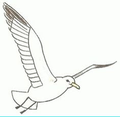 How to draw a seagull in flight, step-by-step. (Add to picture with sailboats.) (art, kids, drawing lessons)
