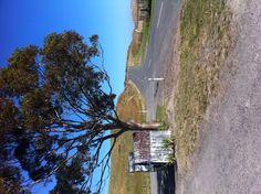 Ocean Beach farm driveway Heartland, Ocean Beach, New Zealand, Country Roads