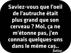 Gif Panneau Humour (49) Troll Face, Quote Citation, New Years Eve Party, Weird Facts, Lol, Cards Against Humanity, Funny, Quotes, Phrases