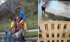 29 pessoas que simplesmente nasceu sem seu instinto de auto-preservação >> http://www.tediado.com.br/01/29-pessoas-que-simplesmente-nasceu-sem-seu-instinto-de-auto-preservacao/