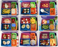 Eggface Recipes: Bento Box Lunch Recipes
