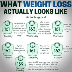 17 Proven weight loss plans that really work. Healthy Weight Loss Plan - The Best and Safest Way to Lose Weight Quick Weight Loss Tips, Weight Loss Help, Weight Loss Plans, Weight Loss Program, Weight Loss Exercise Plan, Weight Gain, Weight Loss Tricks, Weight Loss Foods, Weight Loss Rewards