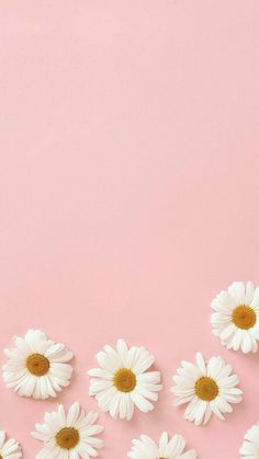 aesthetic wallpaper pastel 36 Ideas Wallpaper Iphone Bloqueo Cute For 2019 Aesthetic Pastel Wallpaper, Pink Aesthetic, Aesthetic Wallpapers, Aesthetic Backgrounds, Aesthetic Collage, Flower Phone Wallpaper, Iphone Background Wallpaper, Pastel Wallpaper Backgrounds, Colorful Wallpaper