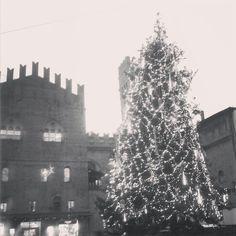 Il natale si fa sentire a Bologna