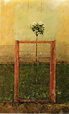 Florencio Galindo de la vara rosal