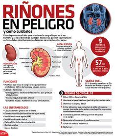 Con nuestra #Infografia te damos recomendaciones para mantener sanos tus riñones. ¡Cuidate!