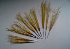 SALE Lot of 10  Peacock Feather Sprays  by simplysilverbyheena, $7.00