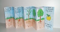 apple tree: life cycle of the plant: accordion book Plant Lessons, Science Lessons, Science Education, Science Activities, Science Projects, Kids Education, School Projects, Activities For Kids, Plant Science