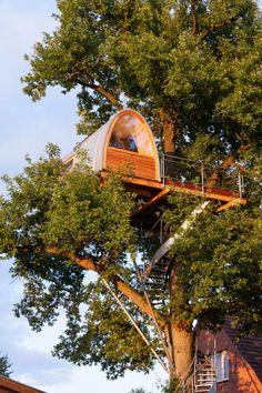 ARCHITECTURE : L'architecte Andreas Wenning de l'entreprise allemande baumraum est spécialisé dans la conception de maisons dans les arbres et notamment de celle-ci, enveloppée autour d'un grand chêne.  Perchée à 11m du sol, elle offre un espace calme et relaxant, permettant à son propriétaire de se couper un peu du monde.